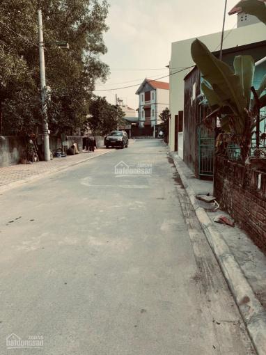 Hiếm, đường nhựa ô tô tránh nhau vô cùng đẹp 118m không còn lô thứ 2 tại Kim Sơn. SĐT: 0984739970 ảnh 0