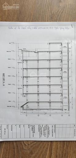 Bán nhà vip tại Dịch Vọng Hậu, Cầu Giấy. 130m2, MT 7.2m, xây 1 hầm, 7T nổi ảnh 0