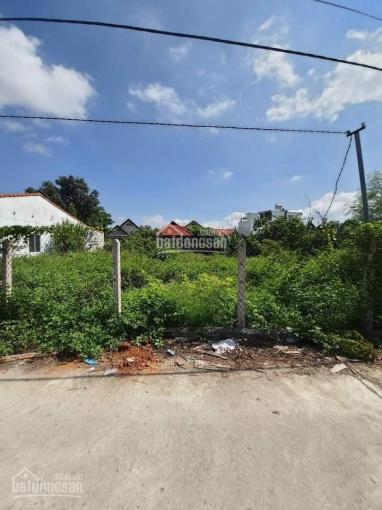 Cần bán đất giá đầu tư Ninh Quang, Ninh Hoà ảnh 0