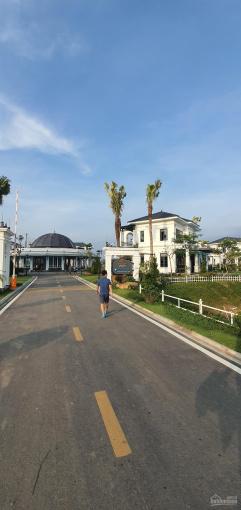 Cần bán lô biệt thự vip đảo Kim Liên dự án Vườn Vua diện tích 500m2 giá 9,5 tỷ bao phí sang tên ảnh 0