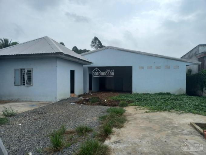 Thanh lý - thửa đất tại Xã An Phong, Huyện Thanh Bình, Đồng Tháp - DT 1949m2 - giá 4 tỷ 191 tr ảnh 0