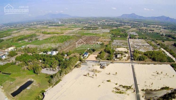 Tôi cần bán nhanh lô đất đẹp MT 28m ngay gần Nguyễn Chí Thanh, Tân Bình, LaGi, giá tốt mùa dịch ảnh 0