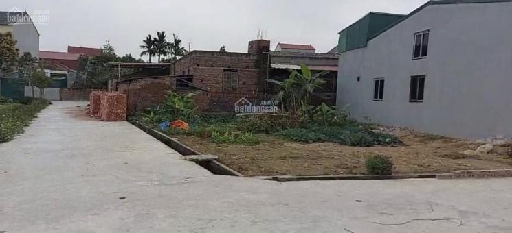 Chính chủ bán đất 2mt bìa làng xã Quang Tiến, DT 50m2 - 160m2 ảnh 0
