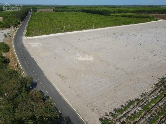 Đất nền biển Lộc An - Hồ Tràm ngay sân bay và khu công nghiệp đất đỏ 125m2. Sổ hồng, thổ cư ảnh 0