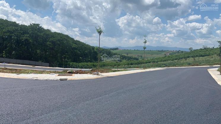Chính chủ cần bán lô đất ngay Quốc Lộ 20, Xã Lộc An, gần Tp Bảo Lộc ảnh 0