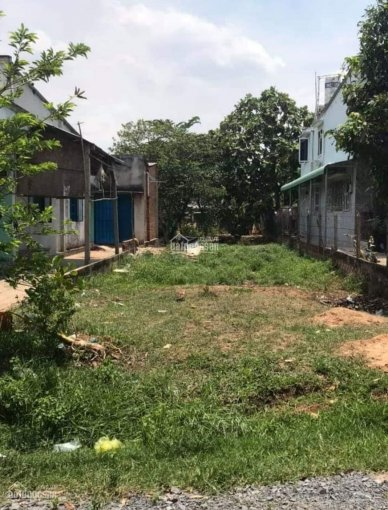 Chính chủ bán gấp đất nền đường Nguyễn Kim Cương, gần TL15, DT 120m2, giá 1tỷ2 SHR, LH: 0365705477 ảnh 0