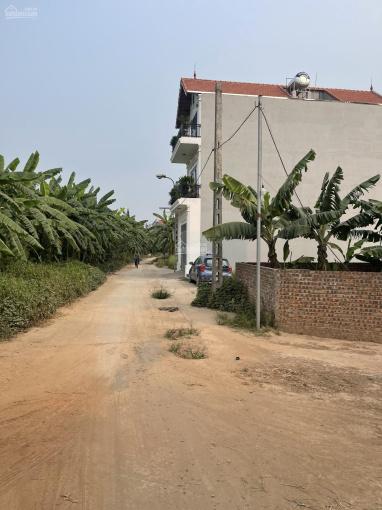 Đấu giá Kim Sơn - sát đường chân đê đang mở rộng 13m - hiện có 3 lô bán - 0844444404 ảnh 0
