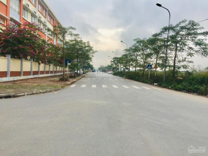 Bán đất đấu giá Tứ Hiệp - Thanh Trì - Hà Nội, diện tích 60 m2, sổ đỏ trao tay ảnh 0