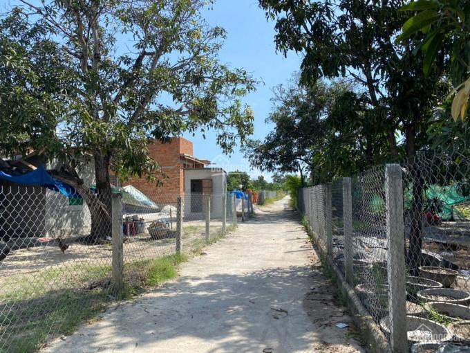 Bán đất Cam Thành Bắc huyện Cam Lâm gần Đầm Thủy Triều. LH 0935736.192 ảnh 0