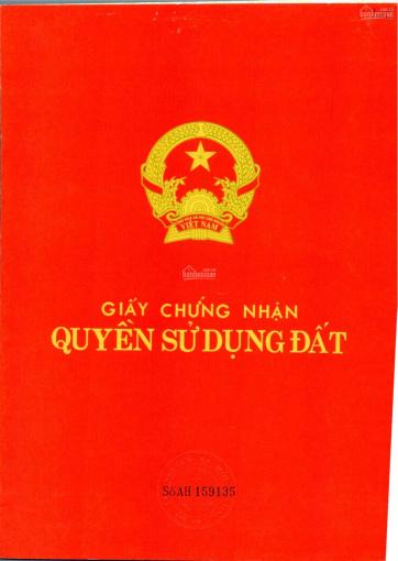 Thông báo mở bán 95 nền Khu dân cư Long Kim 2 - Thị trấn Bến Lức - Phòng kinh doanh CĐT Hoàng Long ảnh 0