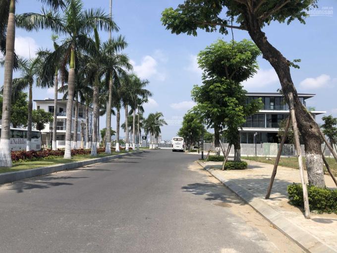 Đất biệt thự đường Hoa Phượng 2 giá cực rẻ 19,75 tỷ/250m2 khu Euro Village 1 ven sông. 0902007027 ảnh 0