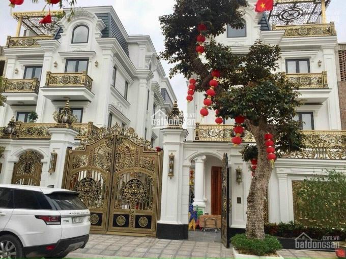 Biệt thự Louis Hoàng Mai - trực tiếp CĐT - 266m2 giá 110tr/m2, xây 4 tầng có hầm, vay lãi suất 0% ảnh 0