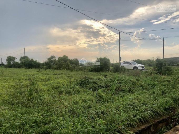 Chính chủ bán đất đường ĐT 852B, Xã Bình Thạnh Trung, huyện Lấp Vò, tỉnh Đồng Tháp ảnh 0