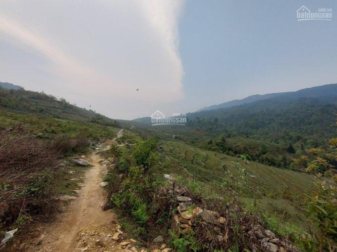 Bán 2531m2 thôn Mò Phú Chải. Có trích Lục Xã ảnh 0