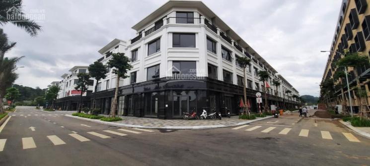 Chiết khấu lên đến trên 20% - mở bán đợt cuối dự án Apec Diamond Park Lạng Sơn ảnh 0
