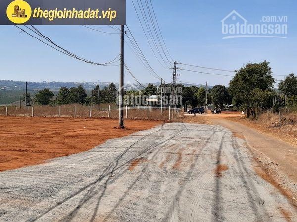 Bán đất đường nhựa rộng 22m mặt tiền đường Lam Sơn B quy hoạch nối thông đường tôn thất tùng ảnh 0