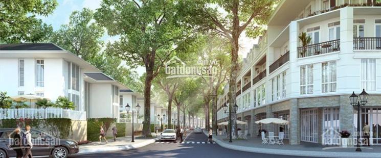 Tôi cần bán 6 lô góc River Bay Vĩnh Yên (Bắc Đầm Vạc) đầu tư sinh lời giá từ 30 tr/m2, 0934406986 ảnh 0