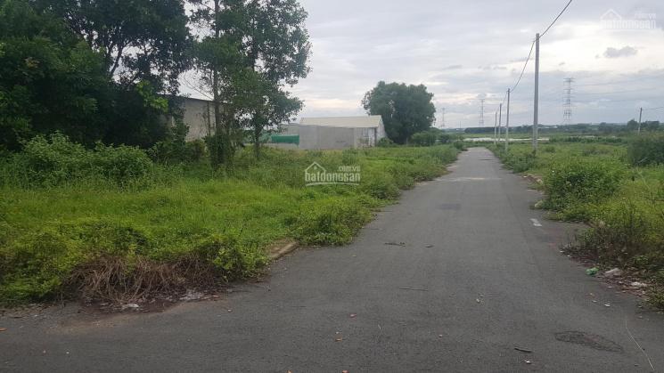 Bán đất Đường ĐT 768, Xã Thạnh Phú, Vĩnh Cửu, Đồng Nai ảnh 0