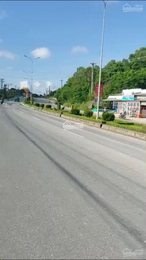 Chính chủ bán cắt lỗ lô đất đã có sổ tại thị trấn Dương Đông, TP Phú Quốc, 10tr/m2, LH 0867 000 628 ảnh 0
