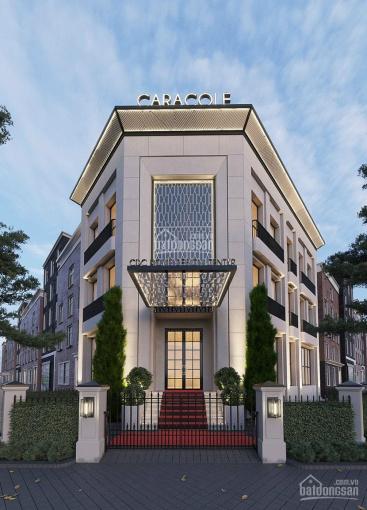 Lô góc 2MT Saigon Mystery Villas 207m2 chỉ 202tr/m2 LH 0902930432 ảnh 0