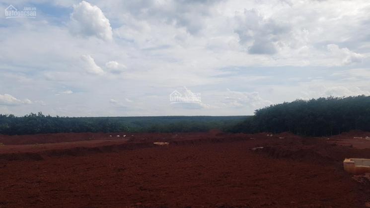 Bán đất mặt tiền đường ĐT 741 đối diện Mỹ Lệ ảnh 0