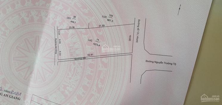 Bán đất diện tích 1073 m2 - chiều ngang 19.60m - chiều dài 55 ảnh 0