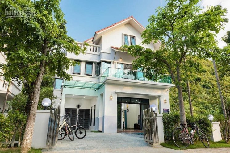 Chính chủ cần bán nhà mặt đường Nguyễn Khuyến, vỉa hè 9m KD cực đỉnh giá 1x,xxx tỷ ảnh 0