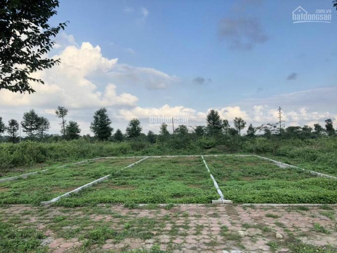 Đất hiếm 100m2 tái định cư đại học Quốc Gia 70 nghìn sinh viên - cạnh CN1, CN2, giá tốt, sẵn sổ ảnh 0