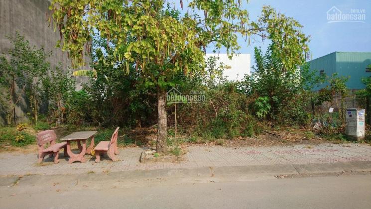 Chính chủ bán lô đất khu tái định cư Phước Thiện ảnh 0