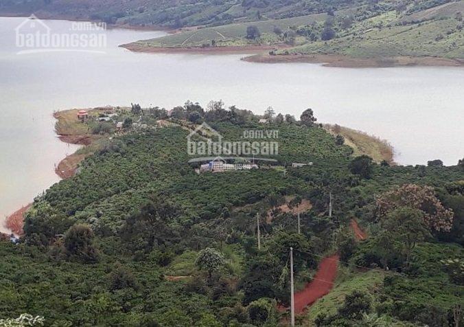 Đất mặt hồ + mặt đường nghỉ dưỡng canh nông - rẻ nhất TP Bảo Lộc. Gần trung tâm thành phố ảnh 0