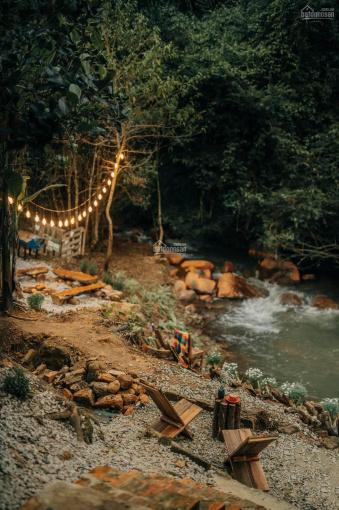Cần bán lô đất view suối, rừng thông. Cách chợ Đà Lạt 5km, homestay vườn dâu view cực đẹp, giá tốt ảnh 0