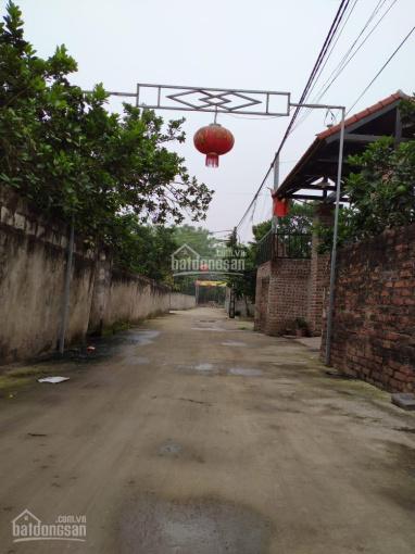 Bán mảnh đất 200m2 Vạn Phúc, Thanh Trì 20m ra ô tô tránh 1,99 tỷ ảnh 0