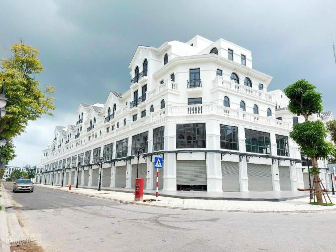 Trực tiếp chủ đầu tư mở bán shop thương mại dịch vụ Vinhomes Ocean Park. LH: 0968066686 ảnh 0