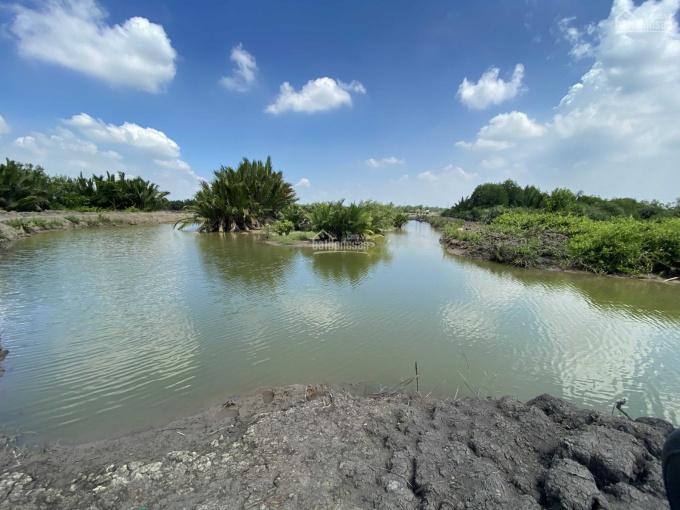 Đất Vĩnh Thanh, SHR, đường oto mặt rạch lớn, giá đầu tư F0 ảnh 0