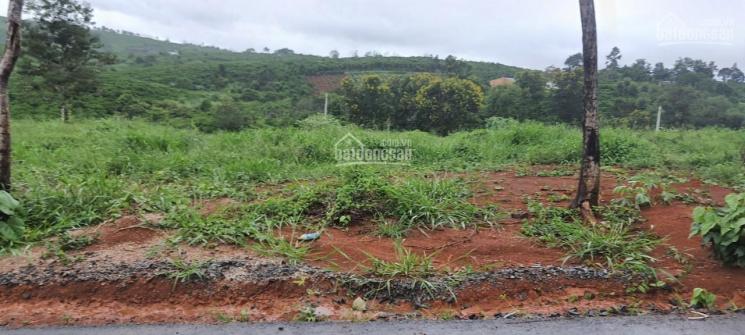 Về quê đoàn tụ gia đình bán sỉ 30 nền đất, SHR, giá chỉ từ 800 tr/nền tại P. Lộc Phát - Bảo Lộc ảnh 0