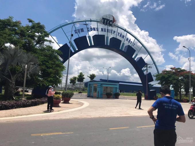 Bán đất Tây Ninh 10,5x98=1000m2 sổ hồng, giá 280triệu. MT ĐT785B nhựa 12m, ngay KCN Tân Hội ảnh 0