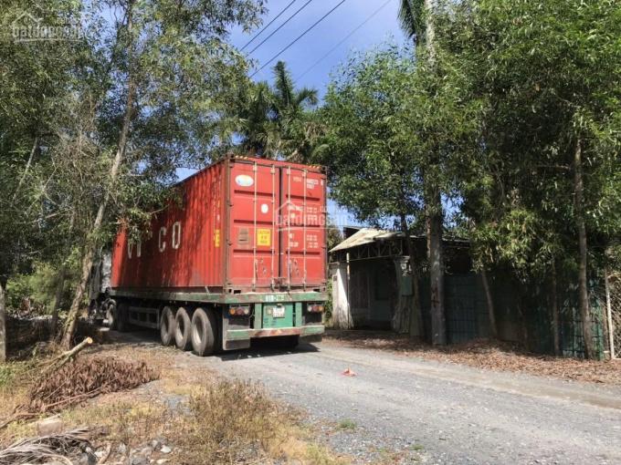 Bán đất đường 12m - Phước Vĩnh An, Củ Chi, DT: 45*150m(7462m2) giá chỉ 2,8 tr/ m2(20.9 tỷ) ảnh 0