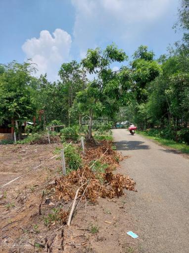 Chính chủ bán mảnh đất biệt thự 4000m2 tại xã Tân Hiệp, 2tr4/m2, thổ cư 100m2, mặt tiền, SHR ảnh 0