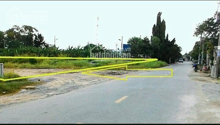 Cần bán đất 2 mặt tiền đường Bùi Thị Lùng 4200m2, thổ cư 100% ảnh 0