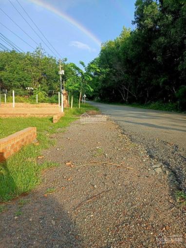 Bán đất Phú An cách HL609 vài chục mét, có bớt lộc ảnh 0