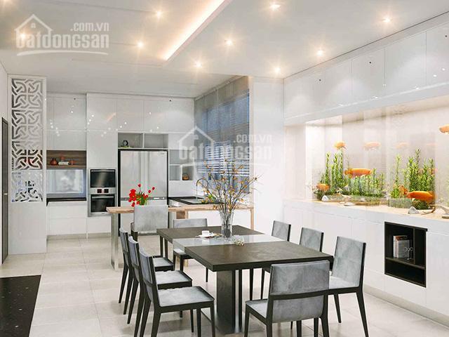 Mua ngay nhà mới DT 48m2 Trần Khánh Dư, TĐ, Q1 sẵn kc 5 tầng 4pn lớn tiện ở giá 8,3 tỷ, O902323354 ảnh 0