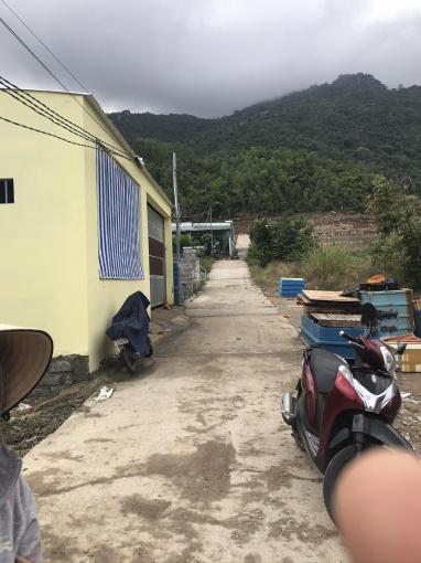 Bán lô 100.1m2 đất trồng cây lâu năm thôn Phước Lộc, xã Phước Đồng, Nha Trang ảnh 0