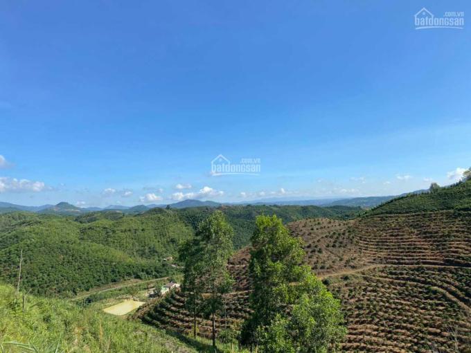Chính chủ cần bán lô đất view cực đẹp xã Đại Lào, Bảo Lộc, diện tích 27000m2. LH: 0907464215 ảnh 0
