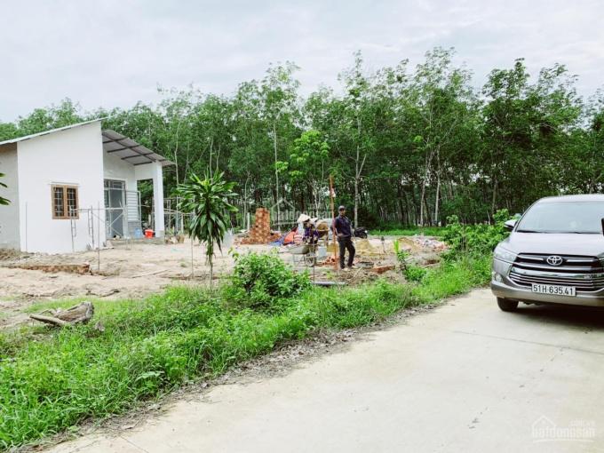 Cần bán đất Phước Bình - Long Thành gần Vedan Gò Dầu 3Km ảnh 0