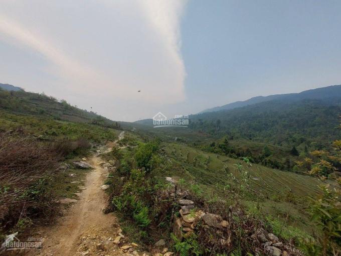 Bán đất thôn Mò Phú Chải, Y Tý, Bát Xát, Lào Cai ảnh 0