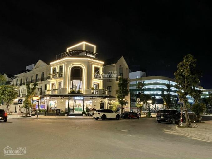 Duy nhất 01 căn shophouse đơn lập góc Hải Âu Vinhomes Ocean Park 290m2, sổ lâu dài, giá 42 tỷ ảnh 0