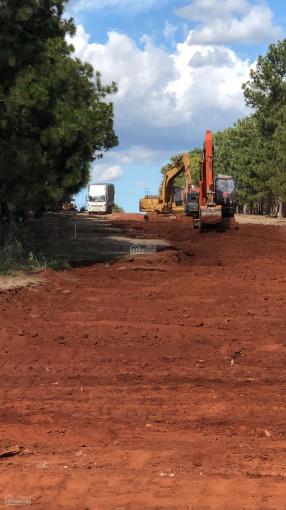 Chỉ 50 triệu mua được lô đất đồi thông cạnh siêu dự án sân golf FLC ảnh 0