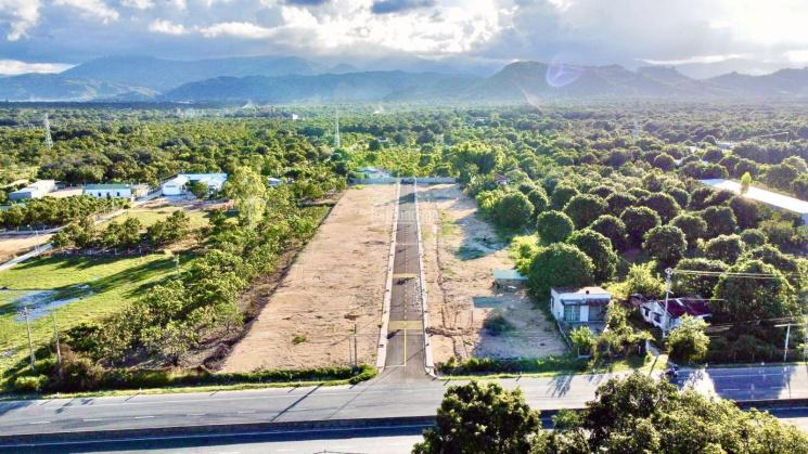 Bán đất MT Quốc lộ 1A (40m) gần biển Bãi Dài - Sân bay Cam Ranh, sổ đỏ thổ cư. NH cho vay 70% ảnh 0