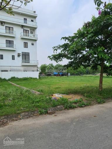 Chính chủ bán đất phân lô, đấu giá khu Quang Tiến, Sóc Sơn LH: 0868763996 ảnh 0