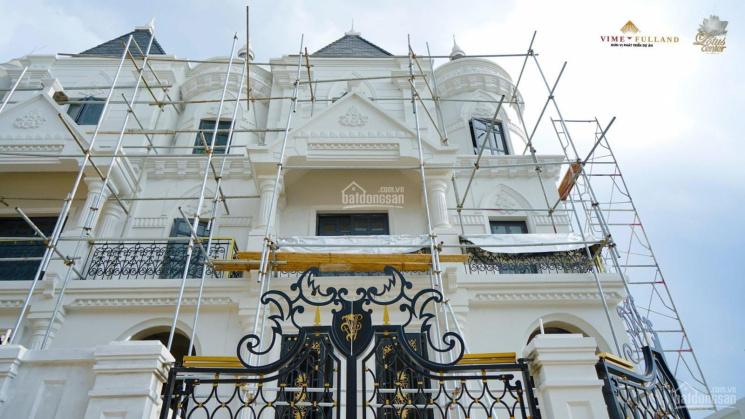 Cần bán gấp căn biệt thự kiến trúc lâu đài Châu Âu giá 245 tr/m2 trong khu biệt thự Vimefulland ảnh 0